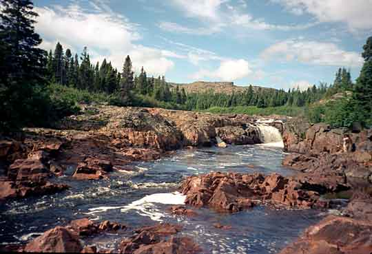 Labrador Brook Trout - Big river
